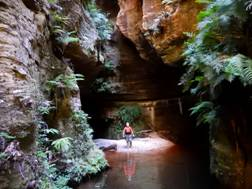 62_06 Claustral Canyon, NSW.JPG